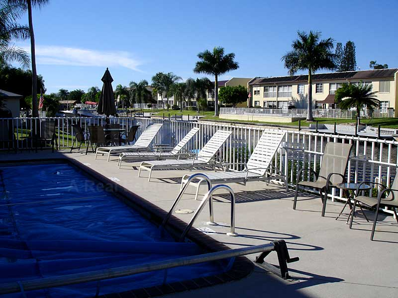 Lady Dolphin Community Pool and Sun Deck Furnishings