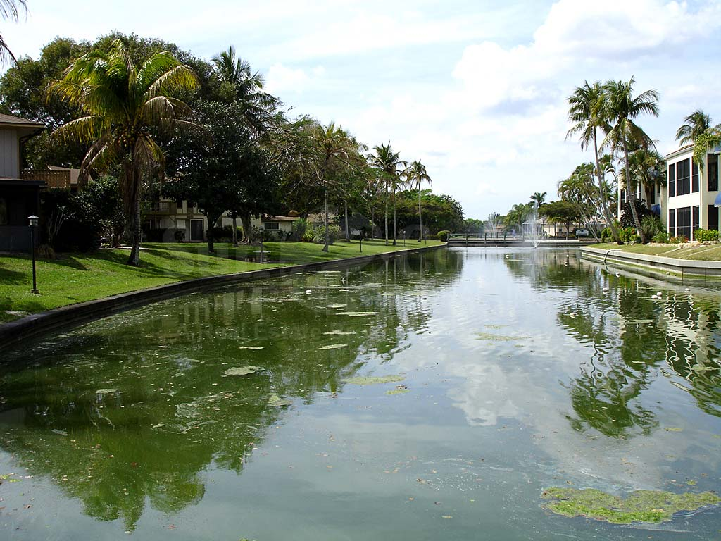 View Down the Canal From Caloosa Isles