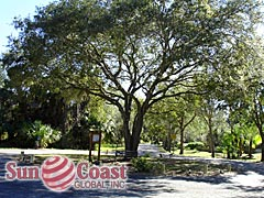 Calusa Woods Neighborhood